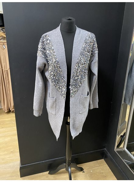 Sequin embellished knitted jacket