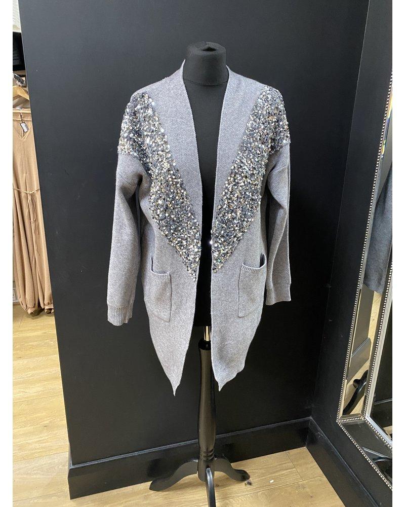 Sequin embellished knitted jacket