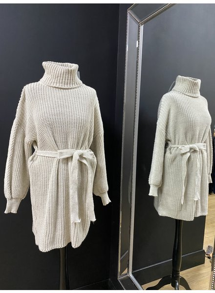 Jasmine roll neck belted  jumper dress