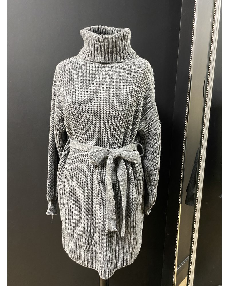 Jasmine roll neck belted  jumper dress