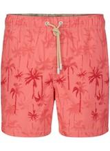 Palm Beach Classic-Badeanzug | Coral Red
