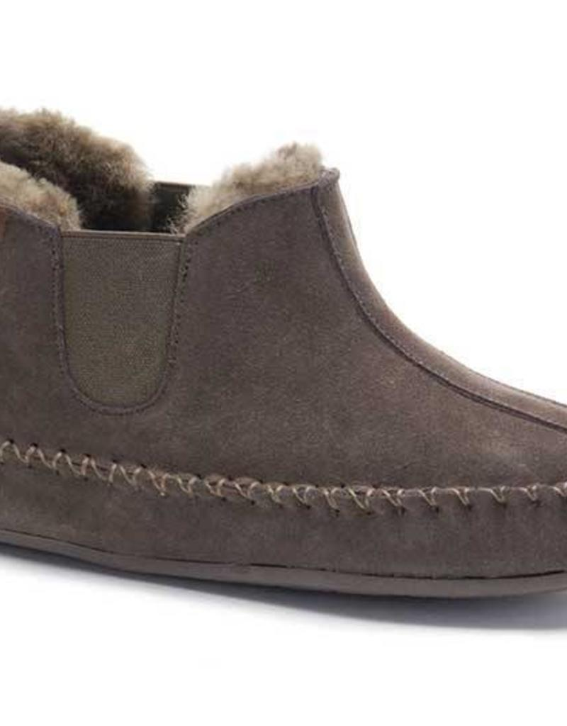 Warmbat Arctic bruin