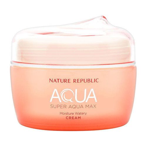 Nature Republic Super Aqua Max Fresh Moisture Cream