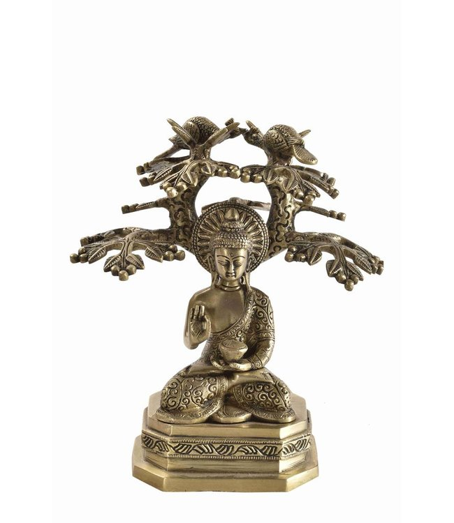 Brass Buddha under tree of life