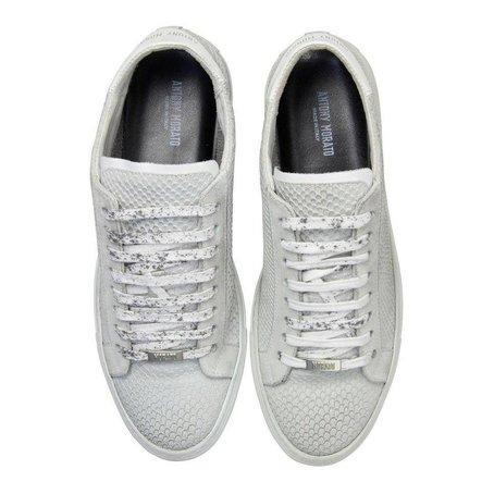 Suede sneakers Antony Morato Junior