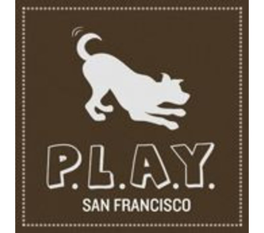 P.L.A.Y. Lifestyle and You.