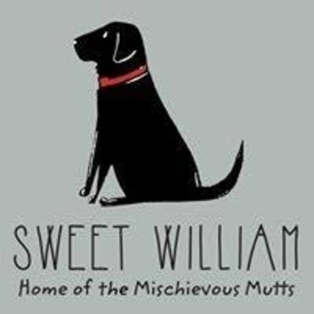 Sweet William - Teckel Mok