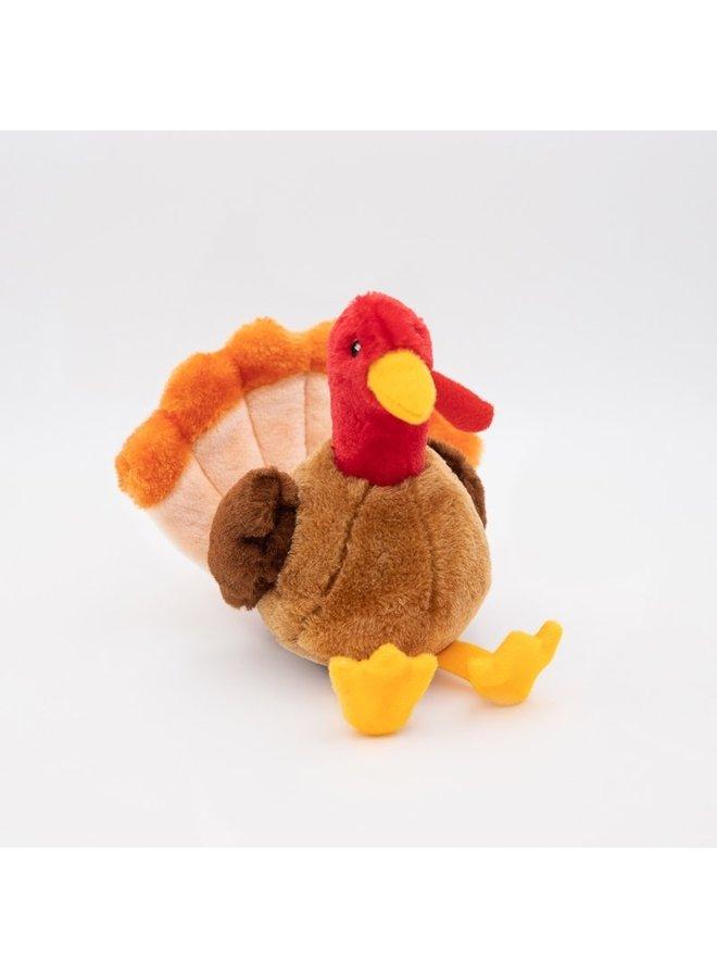 Tucker the Turkey
