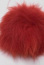 Pompon Groot Rood