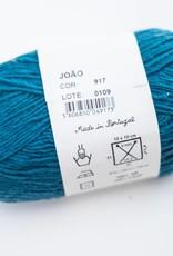 Rosapomar Rosa pomar - Joao kleur 917