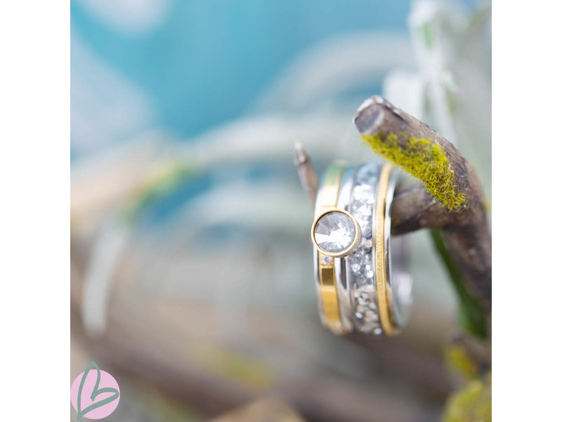 IXXXI Complete ixxxi ring goud zilver toppart