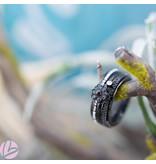 IXXXI Complete ixxxi ring zwarte zeeuwse knop