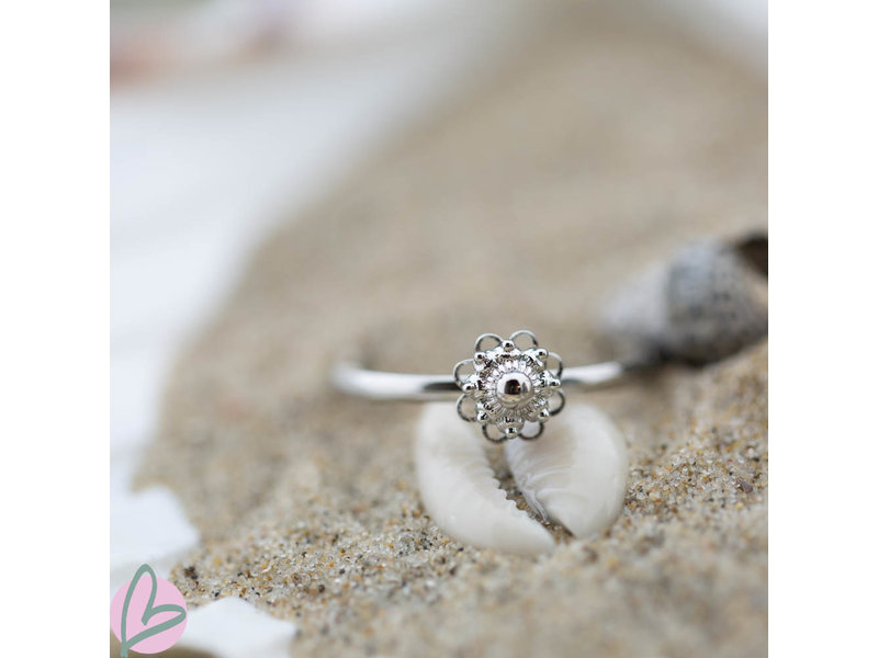 Zeeuws Stalen zilverkleurige ring met Zeeuwse knop - stainless steel