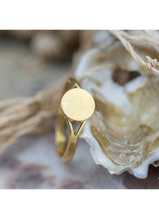 Charmins Stalen gouden ring musthave