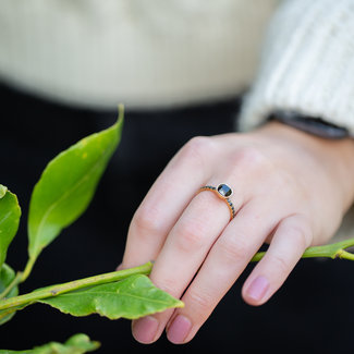 IXXXI Losse ixxxi ring goud met zwart
