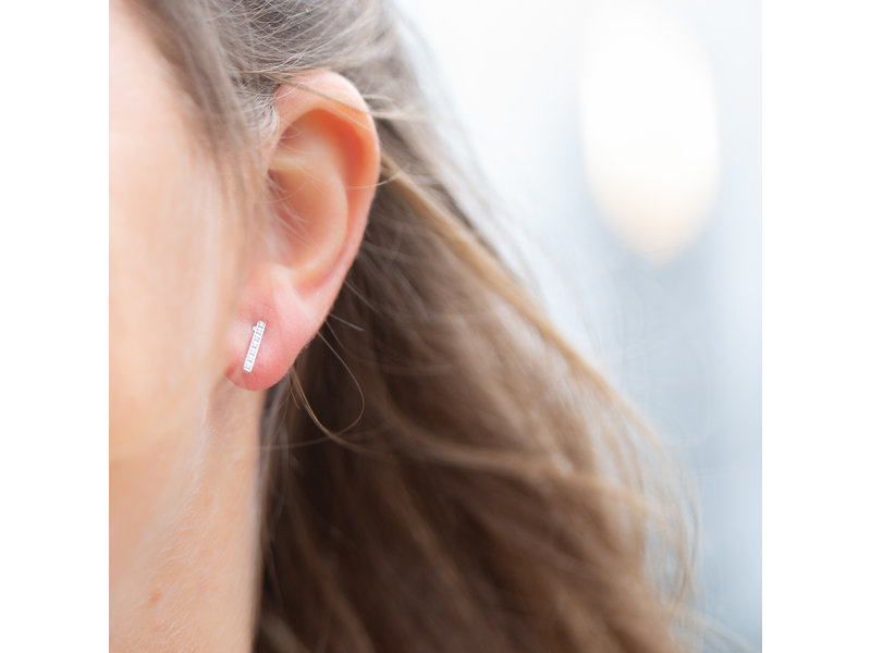 Go Dutch Label Zilver earstuds crystal staaf