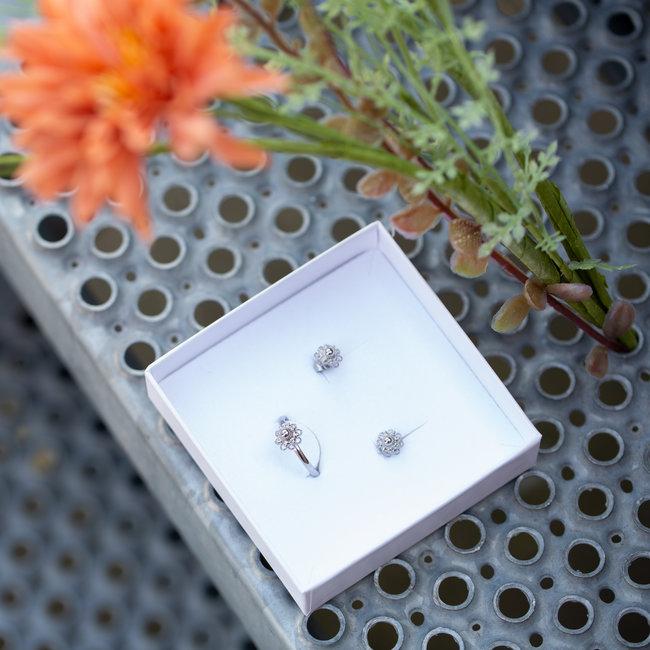 Zeeuws Complete set Zeeuwse knop zilver