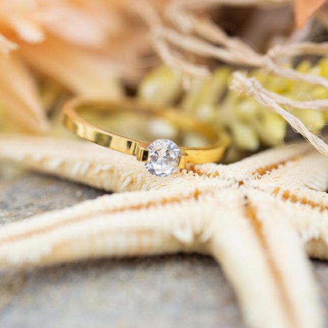 IXXXI aanschuifring 2mm mini glamour stone  goud