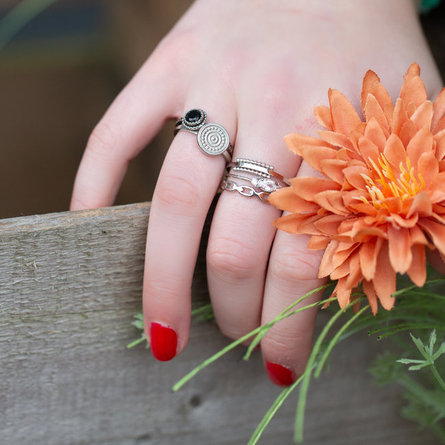Charmins Ring staal zilver munt
