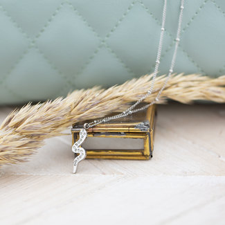 Go Dutch Label Zilverleurige ketting met crystal slang