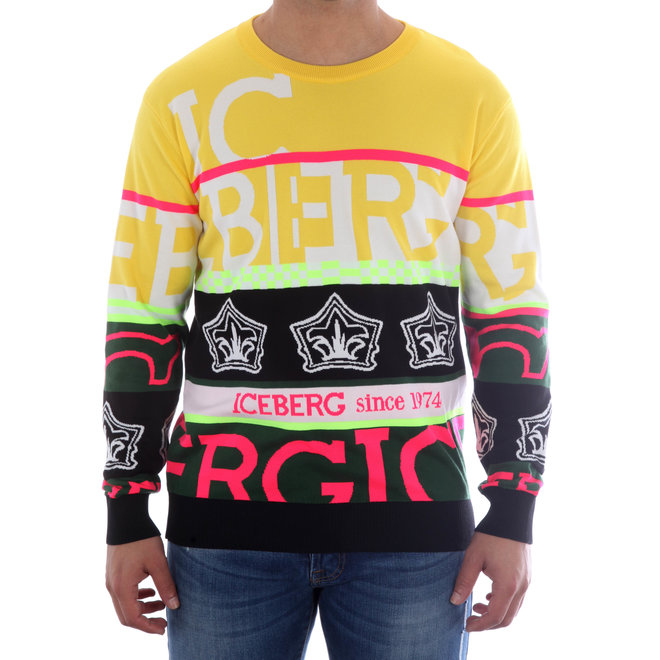 Iceberg | Multicolor Sweater | 20EI1P0A01276040001