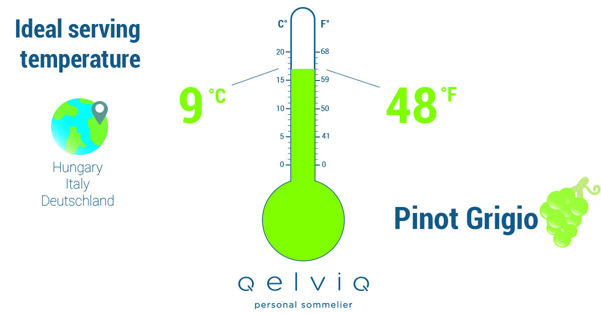 The ideal serving temperature for wine made of the Pinot Grigio grape.