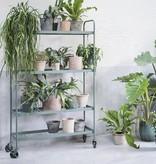 Serax Etagère à plantes