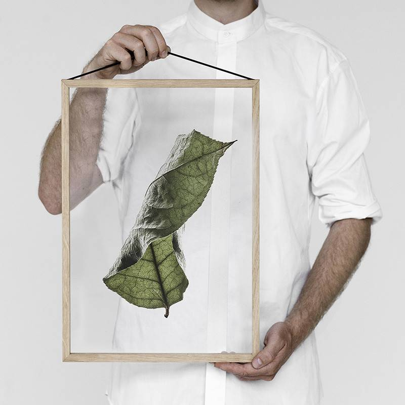 Moebe Floating leaves Poster - Paper Collective