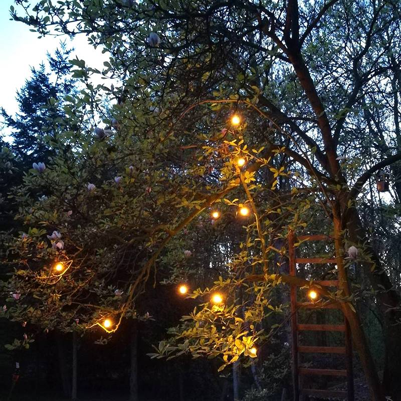 Other brands Guirlande lumineuse LED