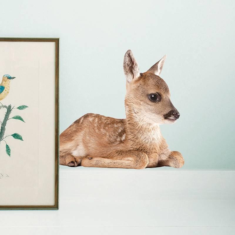 KEK Amsterdam Muurstickers bambi