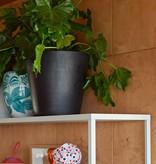 HAY HAY pot de fleurs avec échelle en polybéton XL