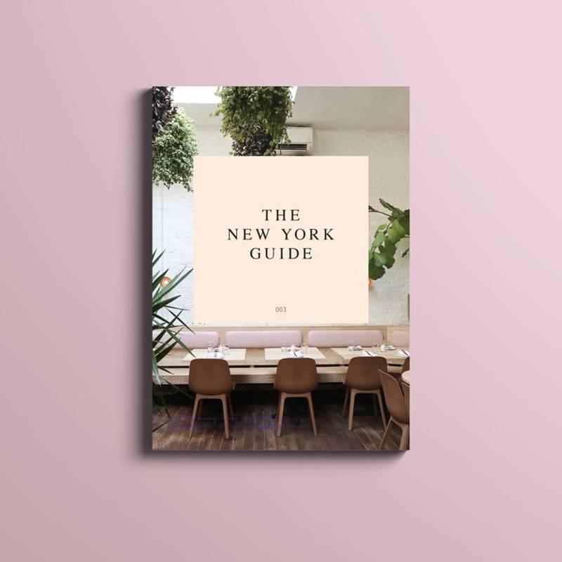Petite Passport Guide de voyage Petite Passport