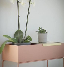 Fermliving Tray pour le plantbox Brass