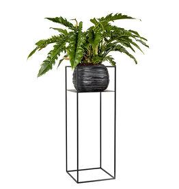 Serax Large display plantenrek