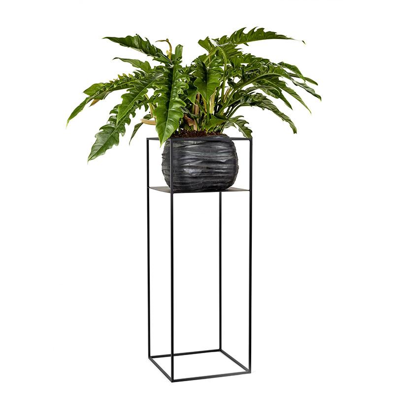 Serax Large display à plantes