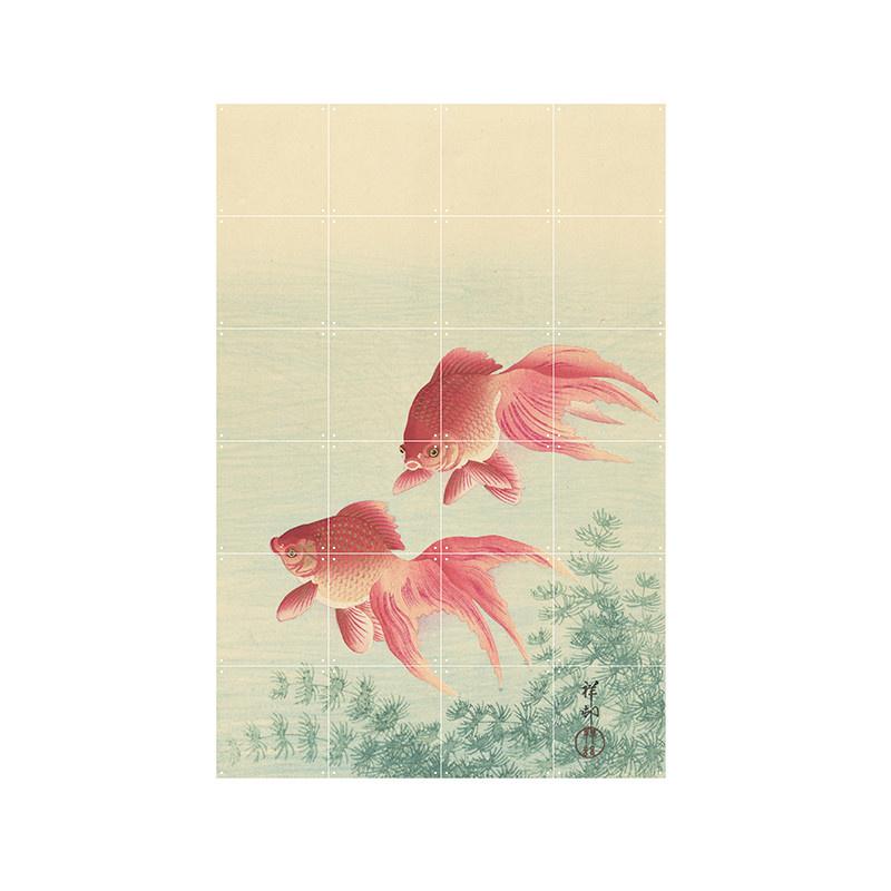 IXXI Two goldfish wanddecoratie