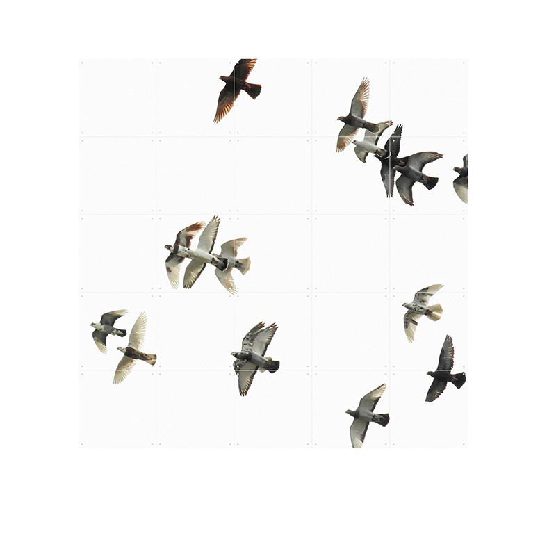 IXXI Birds décoration murale
