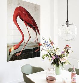 IXXI Flamingo / Audubon wanddecoratie