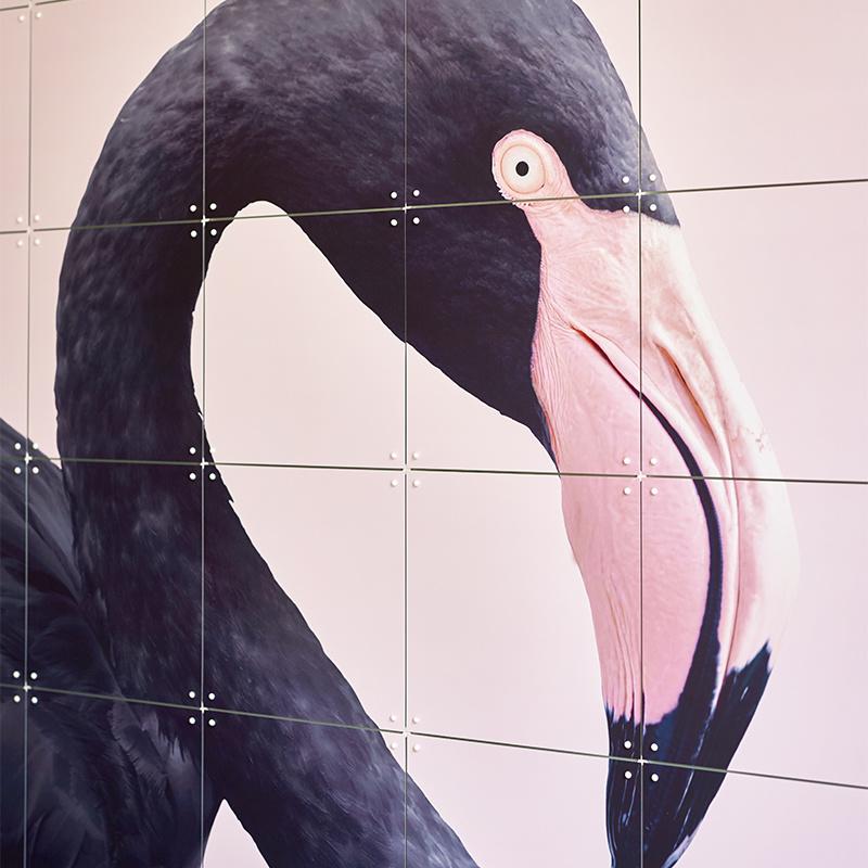 IXXI Black Flamingo décoration murale