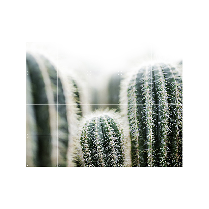 IXXI Cactus & Leaves décoration murale (recto-verso)