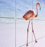 IXXI Pink Paradise wanddecoratie