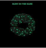 Play&Go Ruimte Glow in the dark opbergzak - speelmat