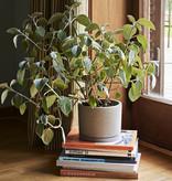 HAY Plant Pot Large