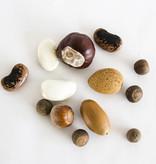 Botanopia mélange de graines