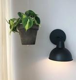 Other brands Bolty - ophangsysteem voor plantenpotten