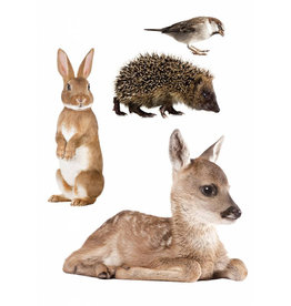 KEK Amsterdam Autocollants animaux sauvages