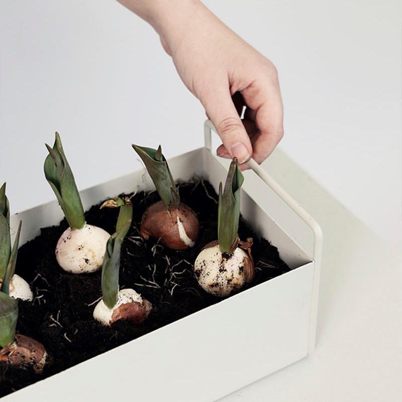Fermliving Plant box small