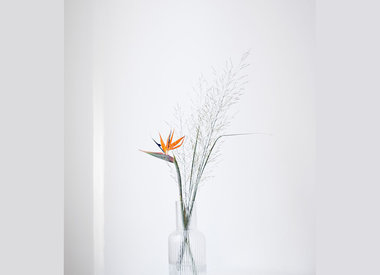 Vases & chandeliers