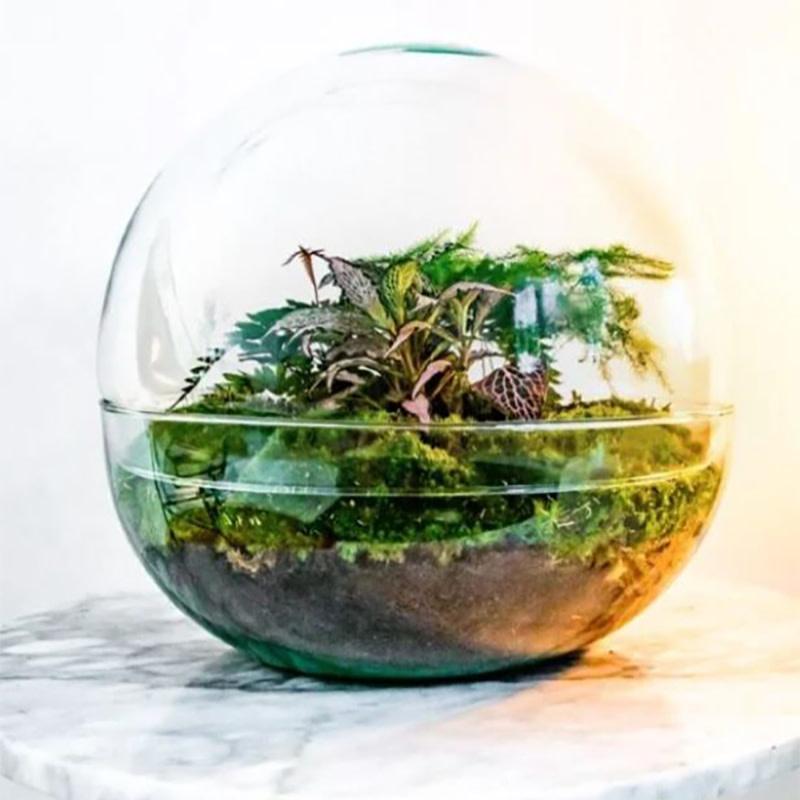 Biodome Botanisch