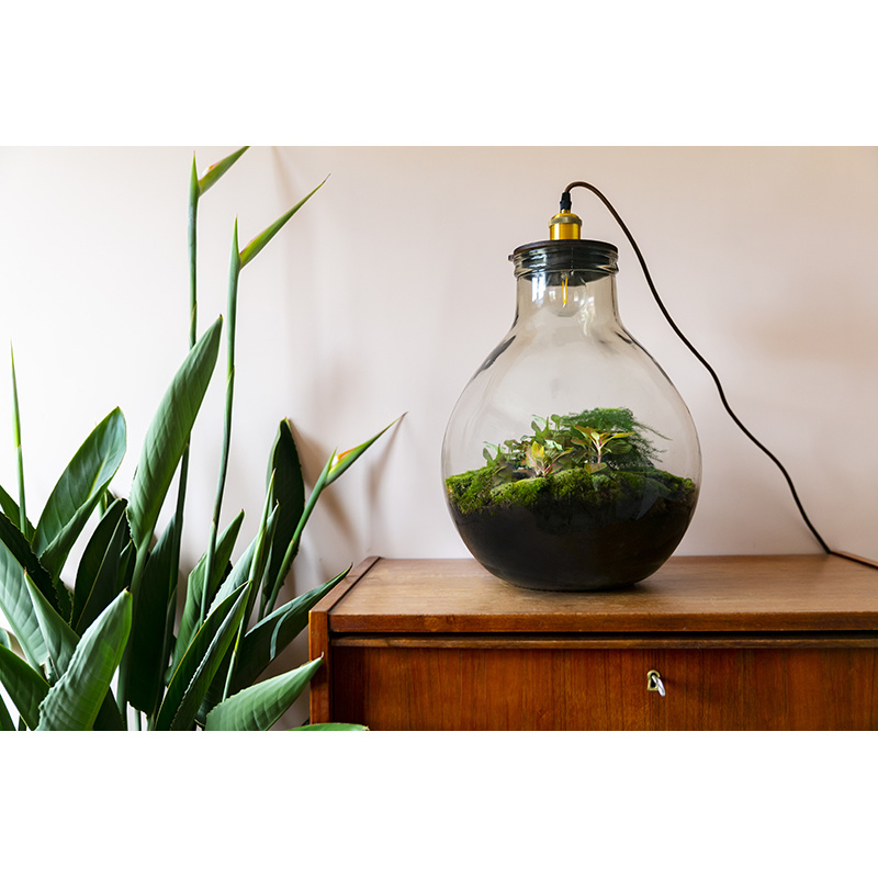 Growing Concepts Ecolight XL